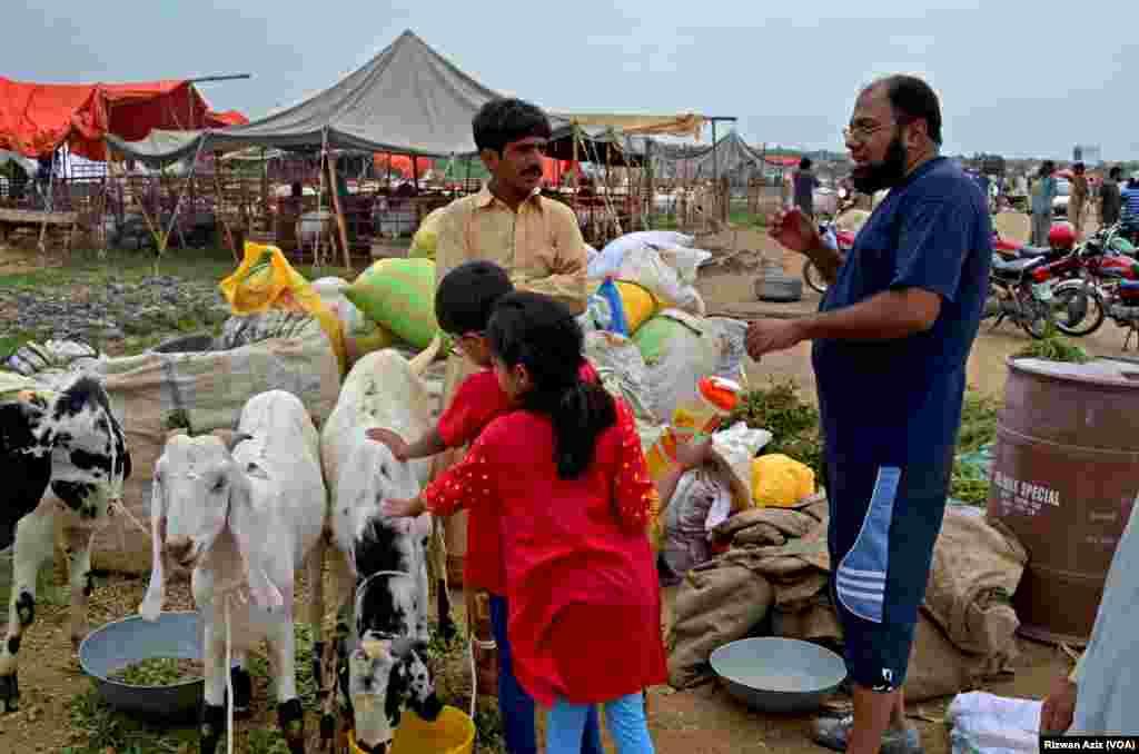 عیدالاضحیٰ کے لیے جانوروں کی خریداری کی غرض سے کئی لوگ اپنے اہلِ خانہ کے ساتھ منڈی کا رخ کرتے ہیں۔