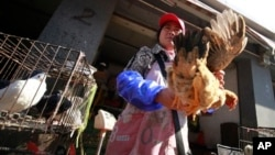2013年4月2 日在上海的一個市場﹐商販用手拿著一隻在雞叫賣。