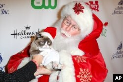 Grumpy Cat arrives at the 84th Annual Hollywood Christmas Parade on Sunday, Nov. 29, 2015, in Los Angeles.