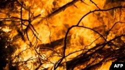 Nhiều đám cháy được gây ra để khai quang trồng cây cọ dầu và các hoa mầu khác