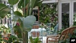Stakleni vrt Ruth Kassinger u početku je za nju bio utočište, a s vremenom se razvio u središnje mjesto za okupljanje njene obitelji
