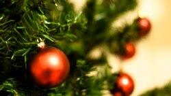 Natal de Paz e inclusão