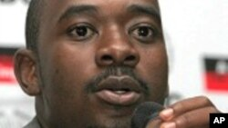 "MDC-T official Nelson Chamisa reacts to complaints of ""irregularities"" and violence during weekend primary elections."
