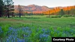 阿克森草原风景如画(国家公园管理局图片)