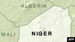 Beynəlxalq diplomatlar Nigerə gəlib