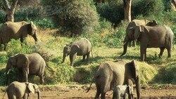 Moçambique: Páscoa não atrai muitos turistas