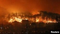 5일 한국 동해시 산불 화재 현장.