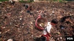 Seorang pemulung cilik memilih-milih sampah di Bantar Gebang, Jakarta. DKI Jakarta menghasilkan 6.200 ton sampah setiap harinya.
