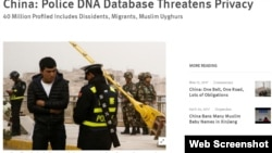 人权观察批评中国庞大基因数据库侵权(人权观察网站截图)