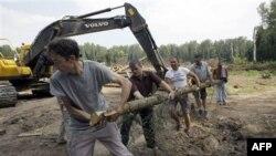 Протест активистов Химкинского леса (архивное фото)