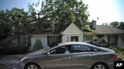 Veliki broj stabala obrušio se na kuće i automobile