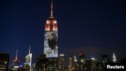 An image of Cecil the lion is projected onto the Empire State Building as part of an endangered species projection to raise awareness, in New York August 1, 2015.