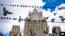 Bồ câu đậu trên dây điện trước Bộ Ngoại giao Nga ở Moscow (ảnh chụp ngày 29/3/2018)