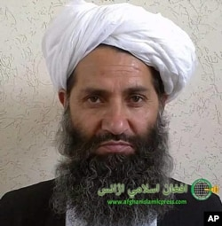 The leader of Taliban fighters, Mullah Hibatullah Akhundzada poses for a portrait in this undated and unknown location photo.