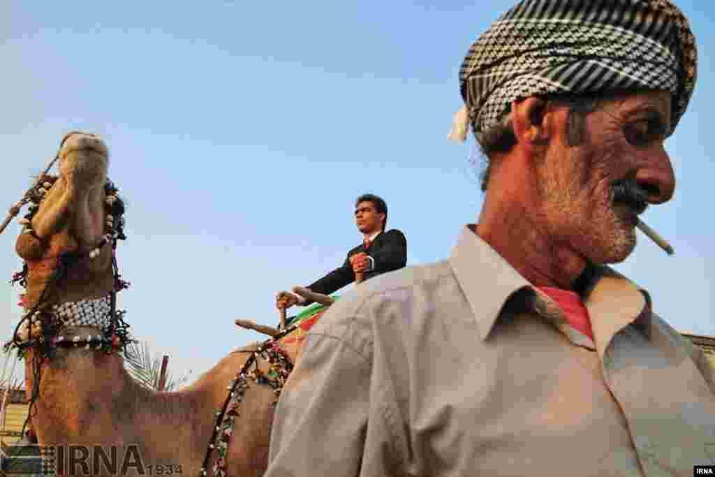 عروسی سنتی در محله «گیاه دان» قشم. عکس: محمد بابایی