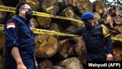 Sistem hukum Indonesia dinilai masih lemah, akibatnya praktik pembalakan kayu hutan di tanah air semakin marak. (Foto: Wahyudi/AFP)