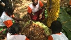 Les paysans s'inquiètent du blocage des ventes de cacao