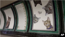 ایستگاه متروی کلپم کامن در لندن