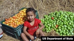 Feed the Future is the U.S. Government's global hunger & food security initiative. (file)