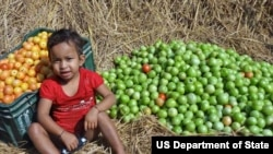 Feed the Future is the U.S. Government's global hunger & food security initiative. (Photo: USAID)