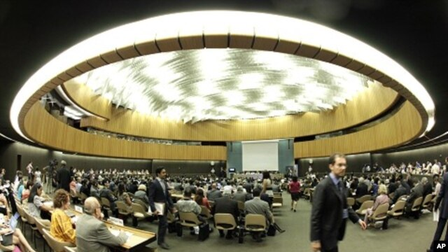 Overview of the special session of the United Nations Human Rights Council on the situation in Syria in Geneva August 22, 2011.