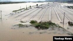 18일 낙동강 경남 밀양 삼랑진 지점에 홍수주의보가 내려린 가운데 삼랑진읍 비닐하우스 철골이 물에 잠겨 있다.