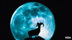 El año cerrará con dos lunas llenas en un mismo mes.