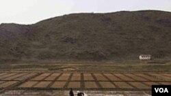 Para petani Korea Utara bekerja di sebuah lahan pertanian di kota Kaesong (foto: dok).