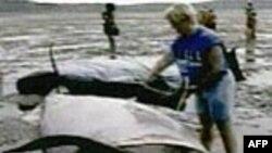 Ngư phủ Việt Nam mai táng con cá voi nặng 7 tấn