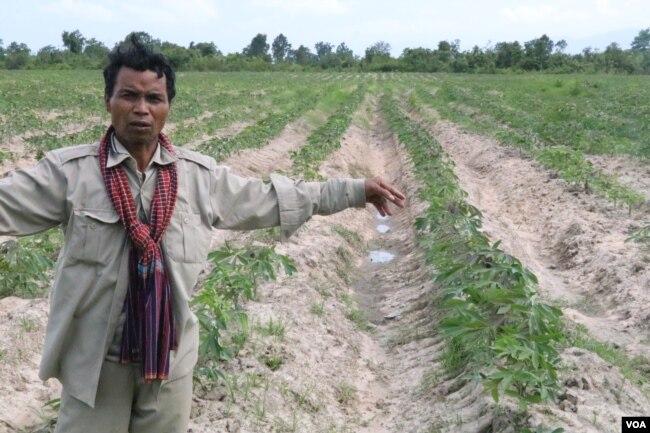 លោក ទួន សឿន អាយុ៥៥ឆ្នាំ ជាតំណាងសហគមន៍មានជម្លោះដីធ្លី មានប្រសាសន៍ថា លោកបានបាត់បង់ដីធ្លីប្រមាណ២០ហិកតា ទៅក្រុមហ៊ុន HLH Agriculture Cambodia។ (ស៊ុន ណារិន/VOA)