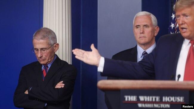 Chuyên gia Anthony Fauci, ngoài cùng bên trái, trong một cuộc họp báo với Tổng thống Trump.