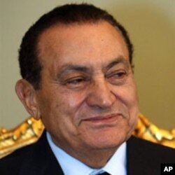 Egypt Presidential Election 2011, Contenders