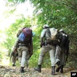 Rangers patrol Cambodia's Phnom Samkos Wildlife Sanctuary in northwestern Battambang province.