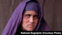 د افغان مېرمنې شربت بي بي کېس په رسنیو مخې ته راغلی او هغه په نړۍ کې پېژندل شوې ځکه پاکستاني چارواکي پرې د نوم کولو دپاره زور راوړي،