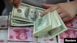 중국 허베이의 한 은행에서 직원이 미국 100 달러 지폐를 세고 있다. (자료사진)