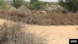 巴基斯坦南部的塔帕卡尔沙漠面积为2万多平方公里