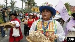 معترضان در پرو عليه بزرگترين پروژه معدن طلا راه پيمايی کردند