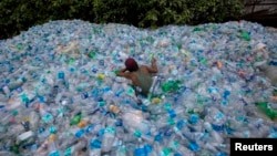 A worker uses a rope to move through a pile of empty plastic bottles at a recycling workshop in Mumbai, June 5, 2014. Plastic bottles are one of the everyday items that contain endocrine-disruptors.