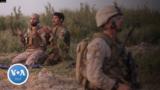 afghan translators
