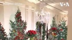 ویدئویی از تِم امسال دکور کریسمس در کاخ سفید