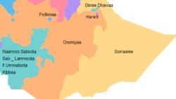 Hawaasi Oromoo fi Somaalee Itiyoophiyaa Minisootaatti Marii Geggeessan