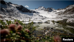 In this file photo, plants grow near a lake in front of Jamtalferner glacier near Galtuer, Austria, on September 11, 2019. (REUTERS/Lisi Niesner)