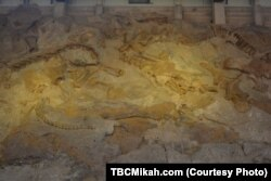 About 1,500 dinosaur fossils found in the park over the past century are displayed inside the 45-meter long Quarry Exhibit Hall.
