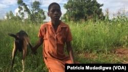 Mollen Chisenwa