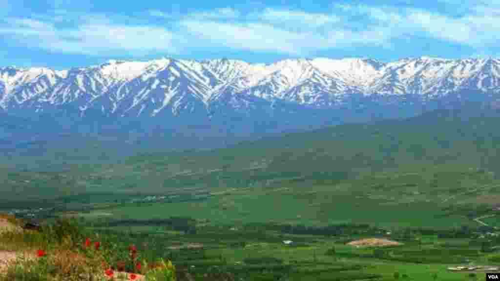 طبیعت کوهستان گرین نهاوند عکس: مهدی (ارسالی شما)