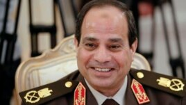 FILE - Egypt's ex-military chief Field Marshal Abdel-Fattah el-Sissi, Feb. 13, 2014.