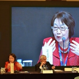Former Japan Foreign Minister Yoriko Kawaguchi, speaking in Seoul, South Korea, Dec. 12, 2011.