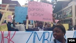 Some of the protesters in the streets of Harare.
