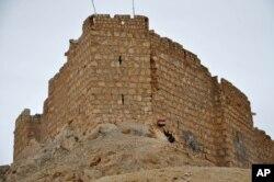 Binh sĩ chính phủ phất cờ quốc gia Syria phía trước thành Palmyra.