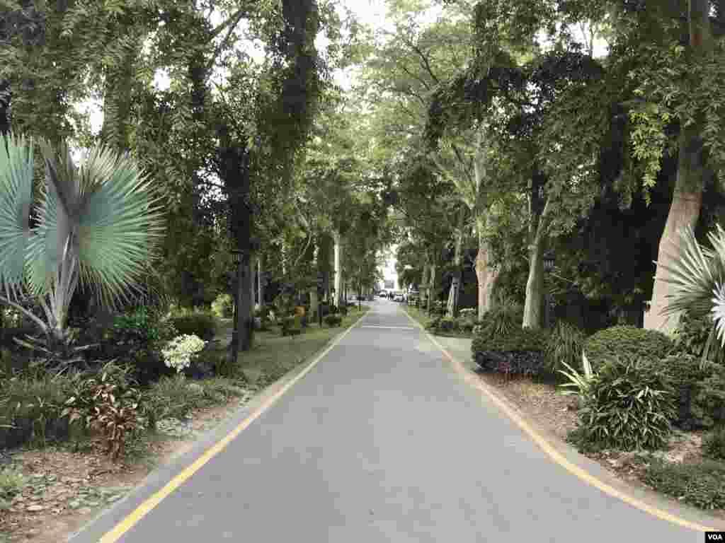 گورنر ہاوس لاہور میں داخل ہوتے ہی لمبی سڑک اور دونوں اطرف گھنے درخت خوش آمدید کہتے ہیں۔